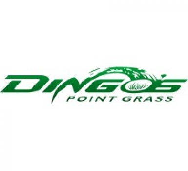 NFL     -     Dingos Point Ball